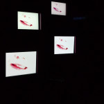 Vagina Monologues-15
